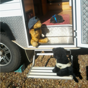 Edward and Tuesday are looking at each other on the steps of a camper van.